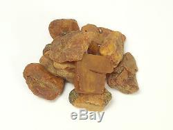 12 Stück (15-20g) Echter Roh Bernstein Rar Amber Stones Natural Baltic 187 Gramm