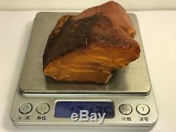 121gr Natural Royal Baltic Amber raw stone
