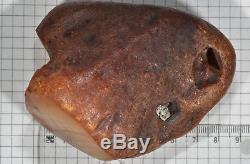 129,6 g Natural Baltic Sea Amber Huge Raw Stone EggYolk antique butterscotch