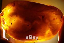162.07 gm Huge Butterscotch Egg Yolk Color Polished Natural Baltic Amber Stone