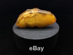 19,8g Natural Old Very Rare Baltic Amber Brooch Cloud Butterscotch Bernstein