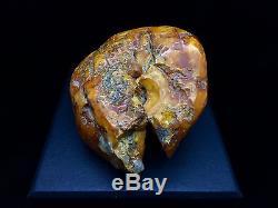 199g Natural Baltic Amber Stone Mat Yellow White Beeswax Colour Bernstein