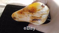 210.7 Gram Royal White Polished Rare Natural Baltic Amber Raw Stone
