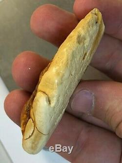 22.5GR Natural Baltic Amber ROYAL WHITE amber stone