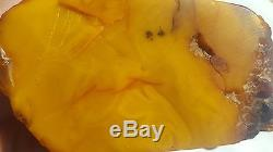 246 gr. Raw pendant natural Baltic amber stone egg yolk honey butterscotch color