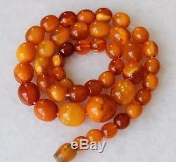 28gr Natural Egg Yolk Butterscotch Baltic Amber Necklace