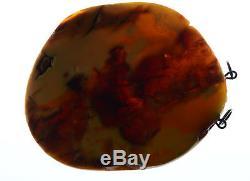 30.2 g Huge Natural Baltic Sea Amber Pendant EggYolk antique butterscotch tiger