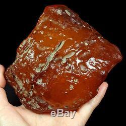351.31g 100% Natural Intact Baltic Butterscotch Amber Antique Egg Yolk WRL12