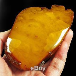 434.4g 100% Natural Baltic Butterscotch Amber Antique Egg Yolk WRL11