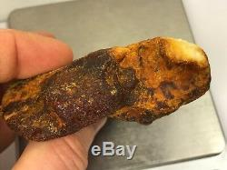 54gr White type Natural Raw Baltic Amber stone