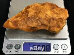 65gr Royal Natural Raw Baltic Amber stone