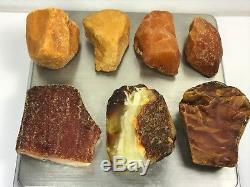 67gr Natural Baltic Amber Stones WHITE