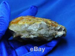 68.07gr. Huge Big Real Natural Genuine Antique White Bone Baltic Amber Bernstein