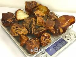 85gr Natural Royal quality Baltic Amber Stones