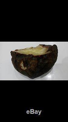 988.8 Gr. SUPER NICE & RARE Natural Baltic Amber Stone BEST DEAL