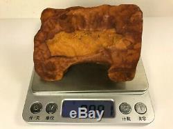 99GR Natural Royal Baltic Amber stone