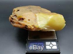 AMBER BALTIC STONE 950 Gr NATURAL RAW ROCK GENUINE Multicolor h5