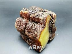 Amber Baltic Raw Stone 623 g Natural Genuine Rock H11