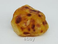 Amber raw stone 117g natural baltic rock k3