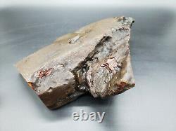 Amber raw stone 813g natural baltic rock d10