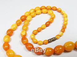 Antike Natur Bernsteinkette Butterscotch baltic amber egg-yolk