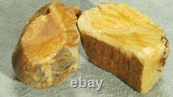 Antique Baltic Natural 2 Amber Stones 57 G Fedex 5 Days Fast Worldwide Shipping