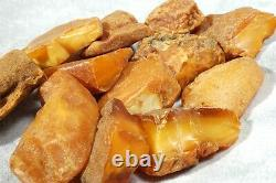 Antique Baltic Natural Amber Stones 169 G High Class Natural Collectible Stones