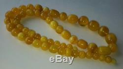 Antique Certified 81g Baltic Natural Amber Egg Yolk Butterscotch Bead Necklace