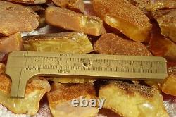 Antique Natural Baltic High Class Color Amber Stones 232 G Fast Fedex Shipping