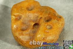 Antique Natural Big Rare Color Baltic Amber Stone 105 G Fedex 4-5 Days Shipping