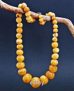 Antique Natural Butterscotch Egg Yolk Baltic Amber Necklace 49.5g