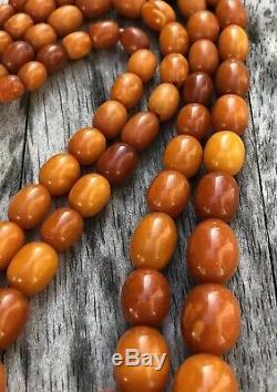 Antique Old Natural Baltic Butterscotch Egg Yolk Amber 2 Strand Necklace 49.9g