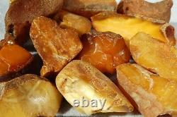 Antique Yellow White Color Natural Baltic Amber Stones 155 Grams Fast Shipping