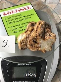 BERNSTEIN Baltic amber Echt Roh Naturbernstein RAW white stone 57 grams #9