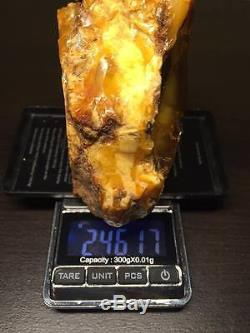 BEST HUGE 246 gr ANTIQUE MILKY COLOR NATURAL BALTIC AMBER STONE