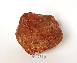 Baltic Amber 178 grams Natural Butterscotch raw rough stone