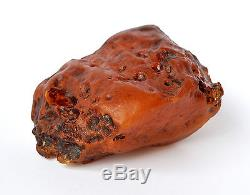 Baltic Amber 384 grams Natural Butterscotch raw rough stone