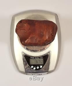 Baltic Amber 570 grams Natural Butterscotch raw rough stone