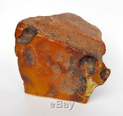 Baltic Amber 585,00 grams Natural Butterscotch raw rough stone