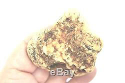 Baltic white amber large fossil specimen natural raw rough rare pure with skin
