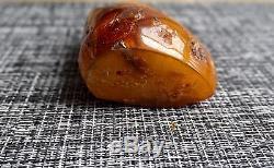 Butterscotch Natural Baltic Amber single piece Polished Huge 164gram