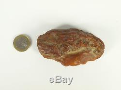Echter Roh Bernstein Rar Amber Stones 55 Gramm Natural Baltic (Private Sammlung)