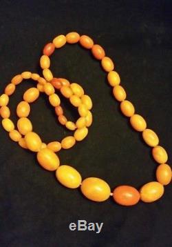 Estate Fresh Baltic Amber Necklace Egg Yolk Butterscotch Necklace Beads