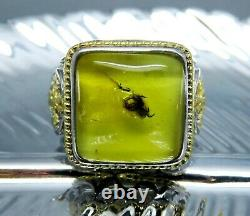 Fossil insect SPIDER inclusion Genuine BALTIC AMBER 925 Sterling SILVER Men Ring