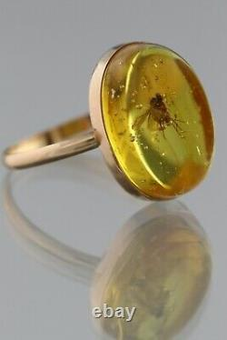 Genuine BALTIC AMBER 14K GOLD Large Fossil Insect FLY 8.5 Ring 1.9g 200520-10
