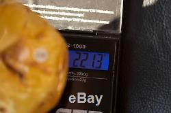 Huge natural Baltic Amber more than 200g Egg Yolk Butterscotch