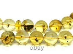 Islamic 33 Prayer Beads WITH INSECT IN EVERY BEAD Baltic Amber Tasbih 27g 15182