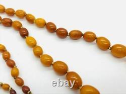 Long Antique Natural Butterscotch Baltic Amber Graduated Necklace