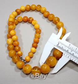 M Natural Genuine Butterscotch Egg Yolk Baltic Amber Necklace 54+ gr