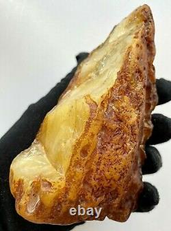 Natural Baltic Amber Raw Stone 293g Poland Tiger Style Egg Yolk Kahrab Bernstein